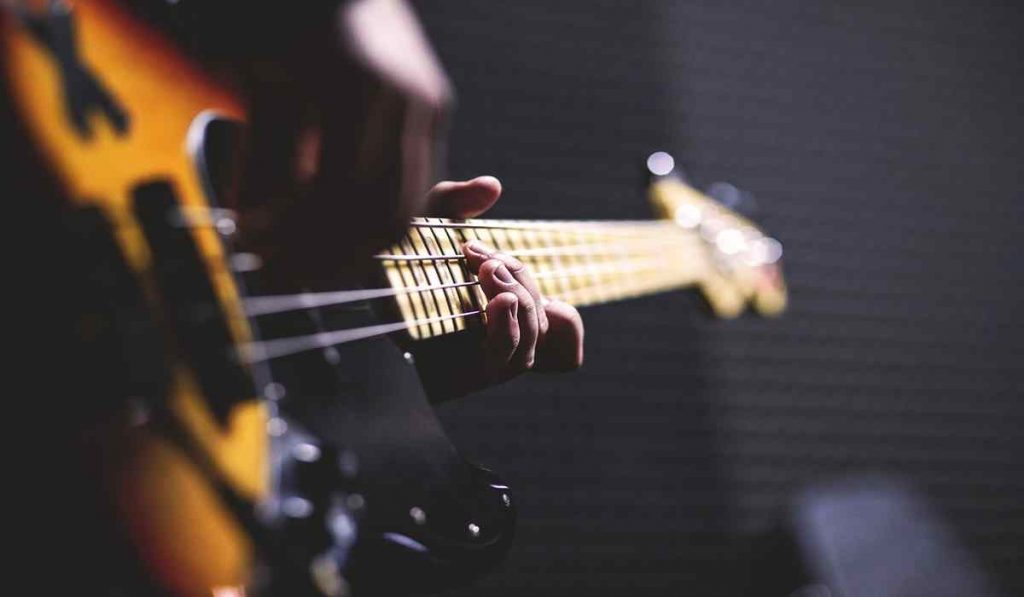 Best Ear protection For Bass Players