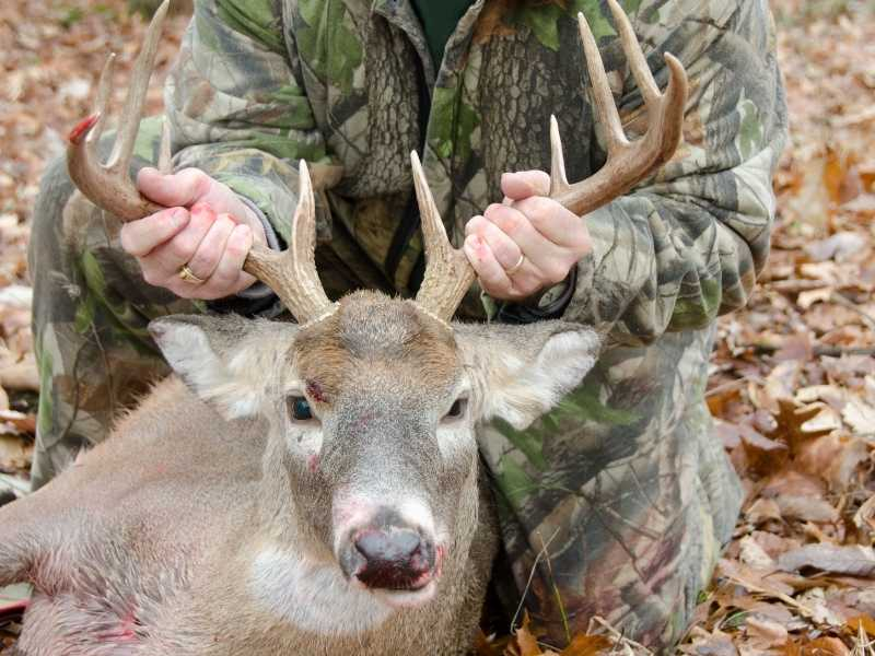 Best Ear Protection For Deer Hunting